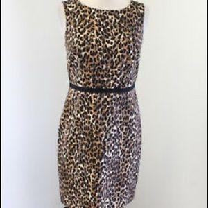 LOFT Size 4 EUC Almost Brand New Below knee dress